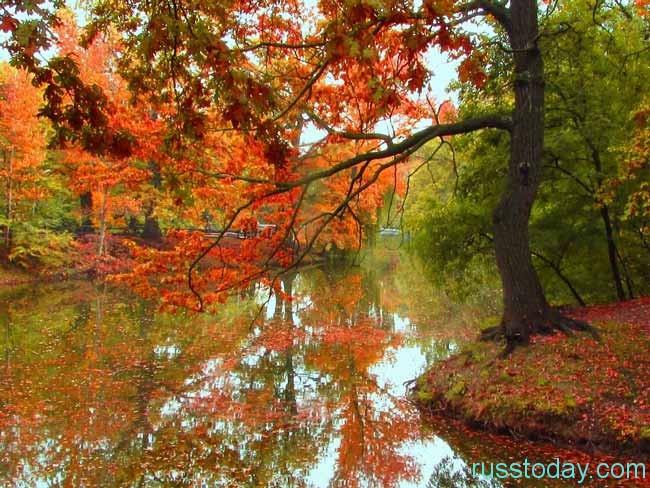 настоящая осень