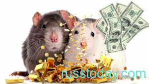 гороскоп крысы