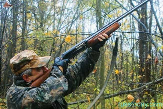 охотник сттреляет