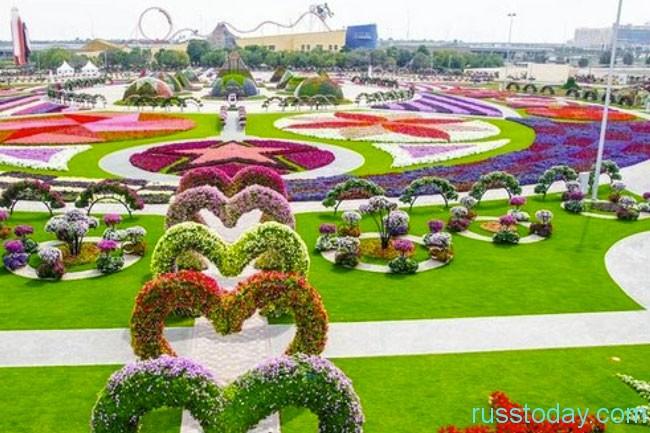 парк цветов — Miracle Garden