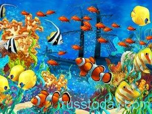  Рыбы