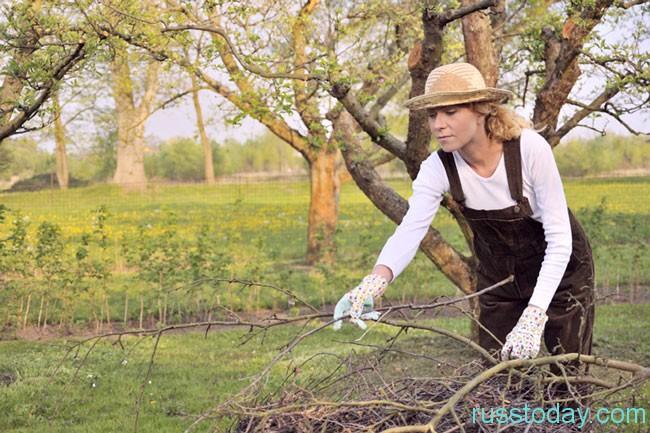 уборка территории огорода