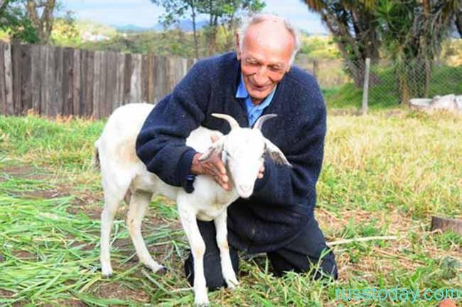 дедушка и коза