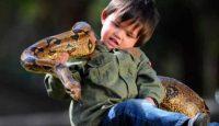ребенок и змея