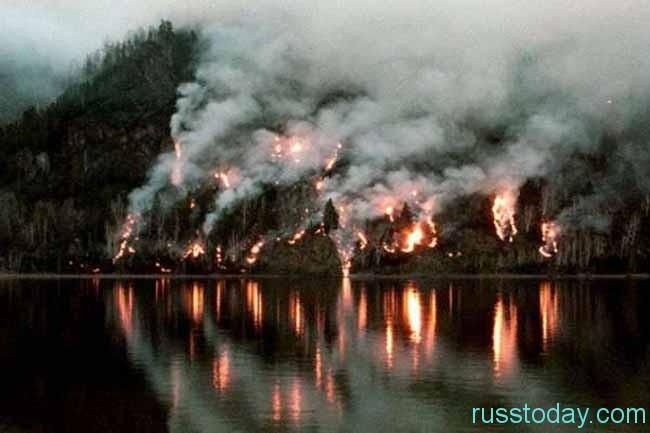 лес в огне