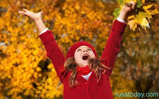 Осень – прекрасная пора