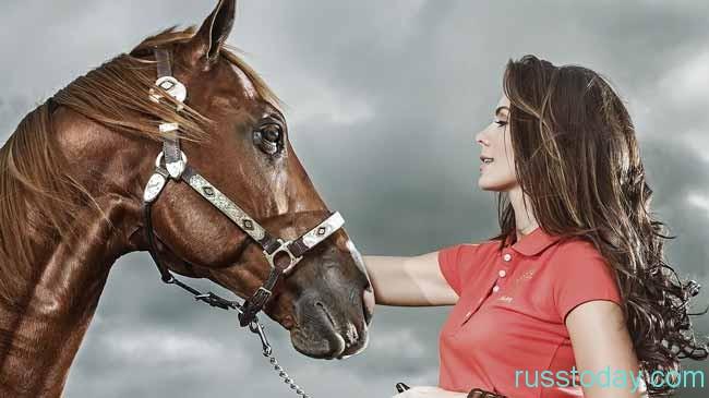 Гороскоп на 2019 год для женщины-Лошади