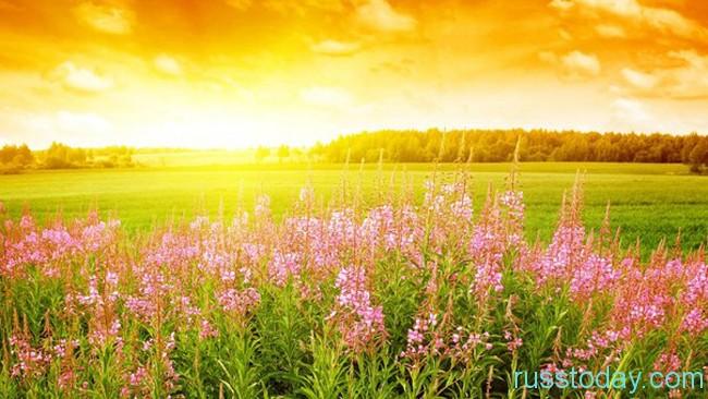 Период солнцестояния - самый длинный день