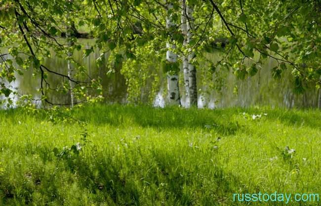 Особенности климата и экологии Костромы