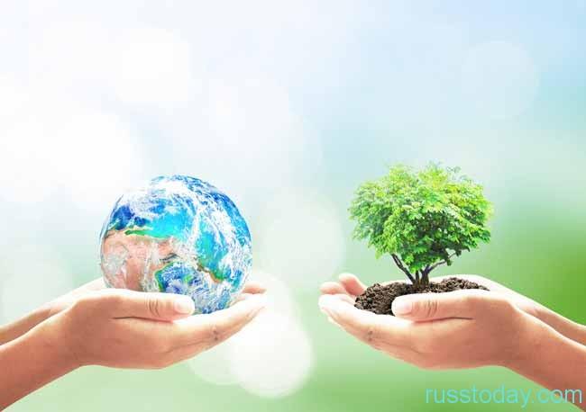 2017 год был объявлен годом экологии