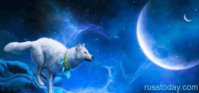 негативные фазы луны - это новолуние