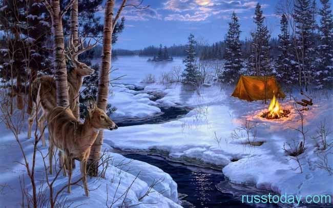 лунная ночь в лесу