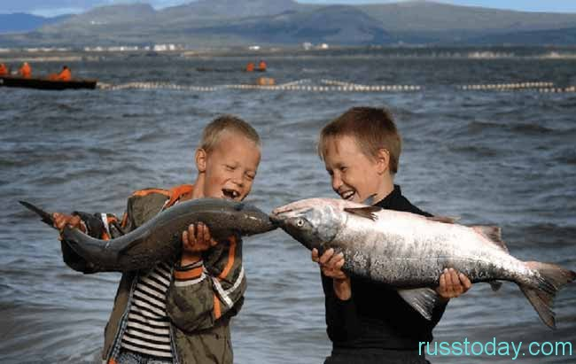 Для Рыб год будет полон сюрпризов, неожиданностей, романтики