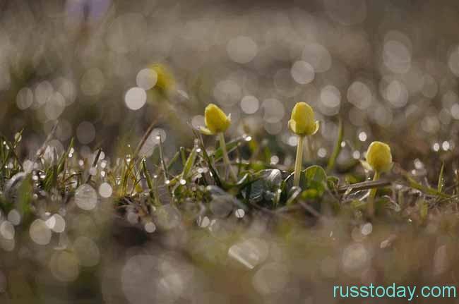 Март - это открытие весеннего сезона