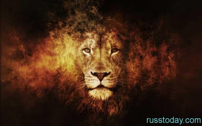 для активного Льва