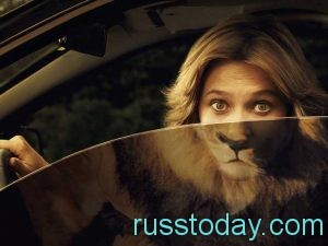 В любви Льва ожидает большой прогресс