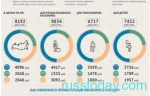 Прожиточный минимум для разного рода граждан РФ