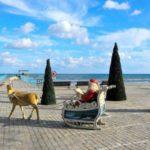 Рождественские праздники и новый год в Лимассоле