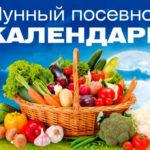 Календарь садовода для Беларуси на февраль в 2020 году