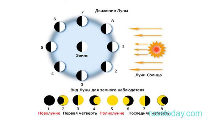 Фазы Луны на Земле