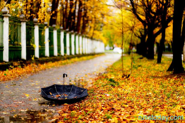 Погода в Карелии на осень 2021 года от Гидрометцентра