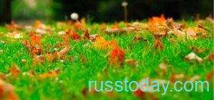 Погода в Урале на осень 2021 года