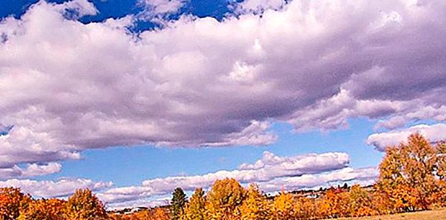 Погода в Ульяновске на осень 2021 года от Гидрометцентра